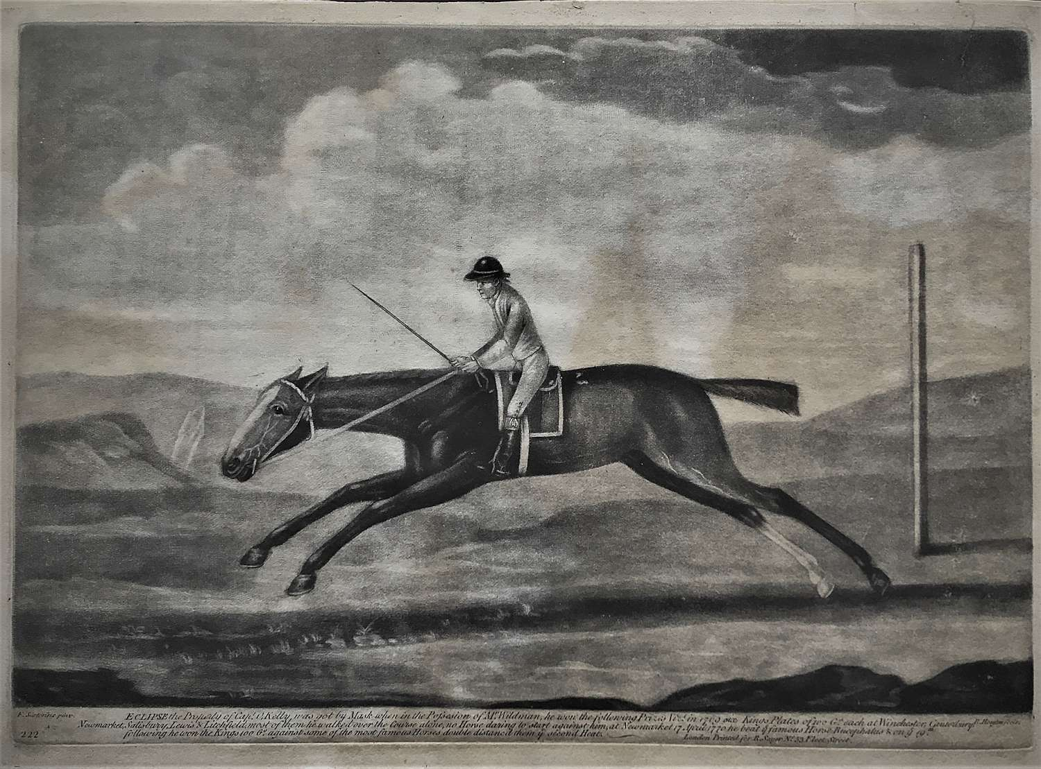 The racehorse