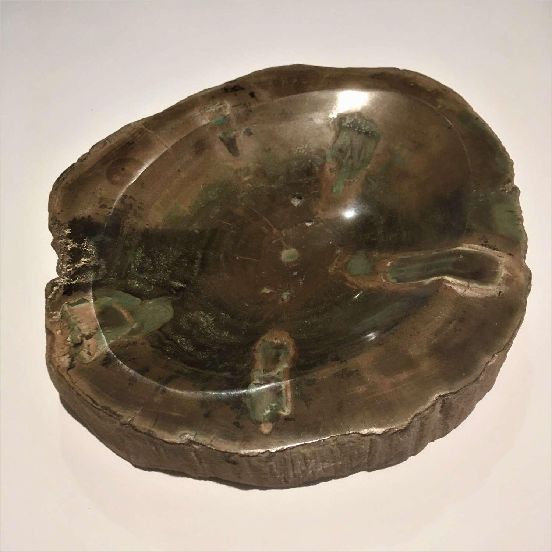 Petrified Fossil Wood Dish