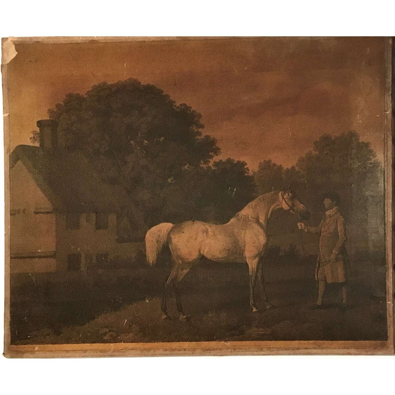 Engraving of the celebrated horse Gimcrack (1760–1777)